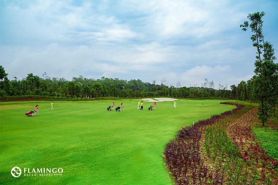 Đại Lải Flamingo Golf & Club - 18 hố - ngày thường