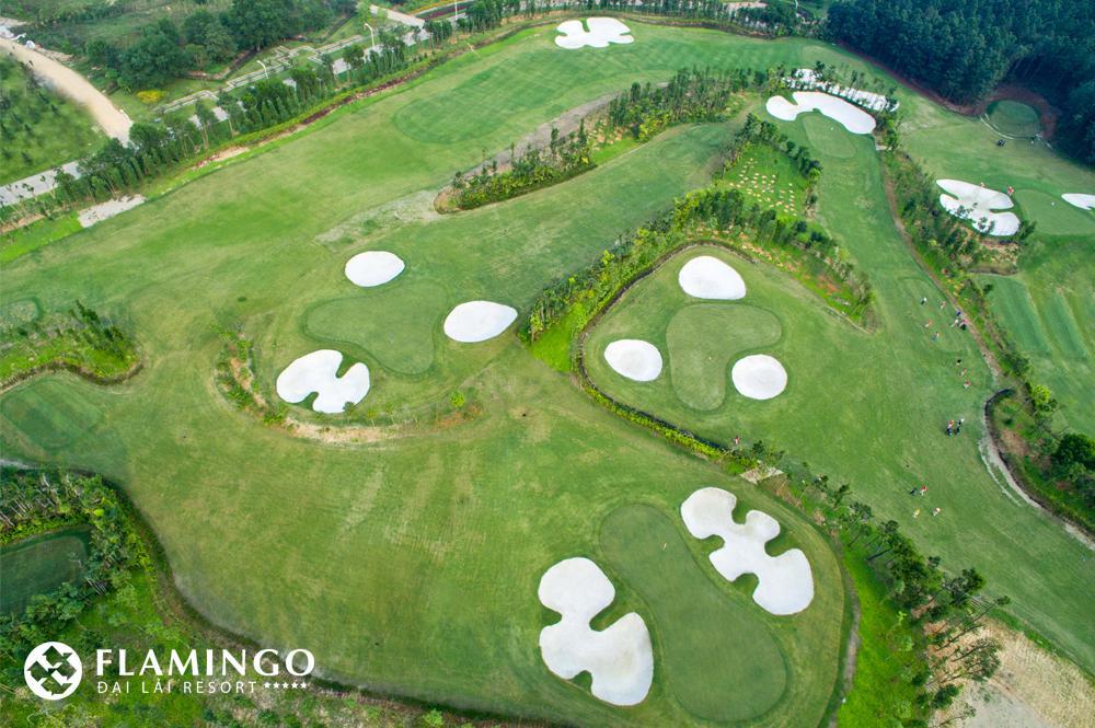 Sân Golf Flamingo Đại Lải - thứ 3 đến thứ 6 cho khách lẻ